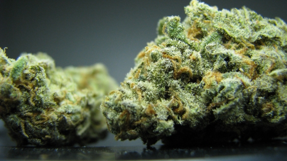 California Dank Weed