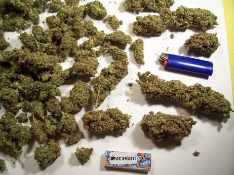 PowerPlant Weed (picture)