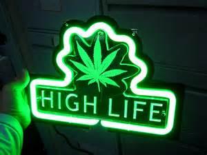 Beginner's Guide to Growing Marijuana (Weed Review)