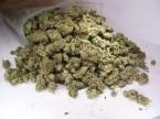 09-zipbag-marijuana-container