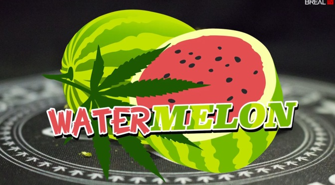 Dr. Greenthumb Strain Review – Watermelon | BREALTV